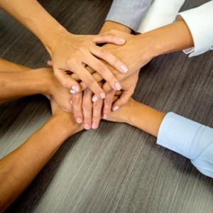 Corporate Wellness, Team Building